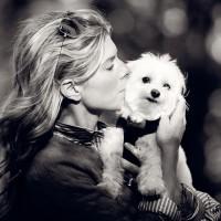 Lauren Camerini - The Peaceful Dog